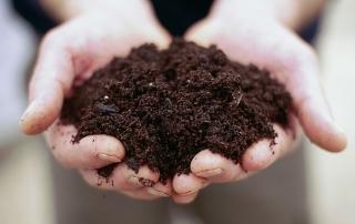 soil_in_hands_-_francesca_yorke